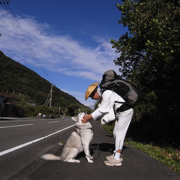 11月19日 おへんろ9日め by GX100_c0049299_19293963.jpg