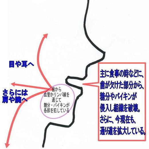 f0154325_15485195.jpg