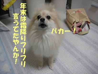 c0179136_2123844.jpg