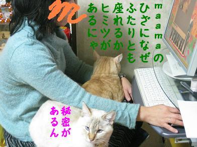 b0151748_2001951.jpg
