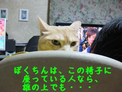 b0151748_2045630.jpg