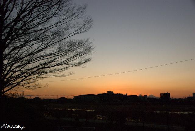 やさしさを、冬木立ちが描く_f0147895_04143.jpg