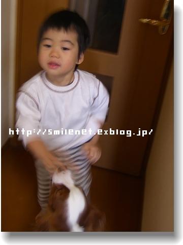 c0040201_20545412.jpg