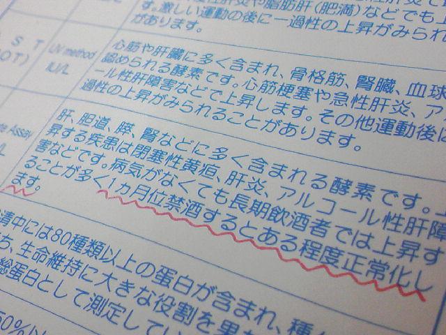 ガンマー・ジー・ティー・ピー上昇中!!_f0197703_20512761.jpg