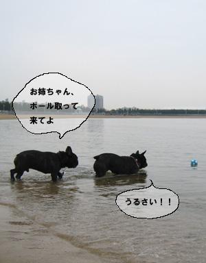 f0015314_12505189.jpg