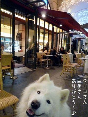 マサラカフェ_c0062832_16284015.jpg