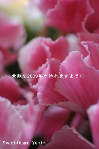 c0083439_13492620.jpg