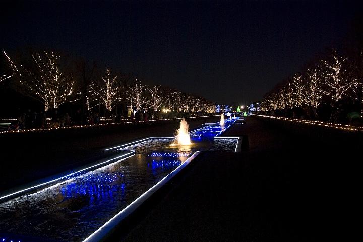 昭和記念公園のウインタービスタイルミネーション_e0000746_20513635.jpg