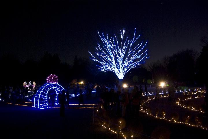 昭和記念公園のウインタービスタイルミネーション_e0000746_20515760.jpg