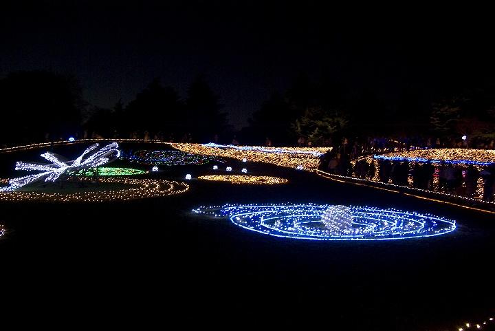 昭和記念公園のウインタービスタイルミネーション_e0000746_20522011.jpg