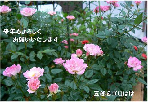 e0014154_2222413.jpg
