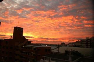 綺麗な茜色の朝_e0166355_7153865.jpg