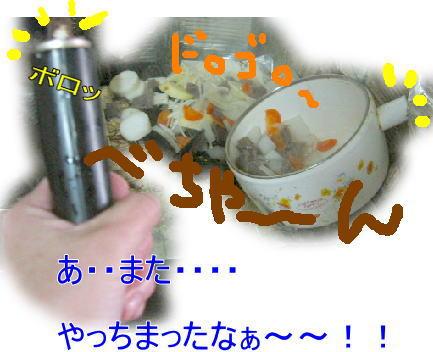 f0082367_1320772.jpg
