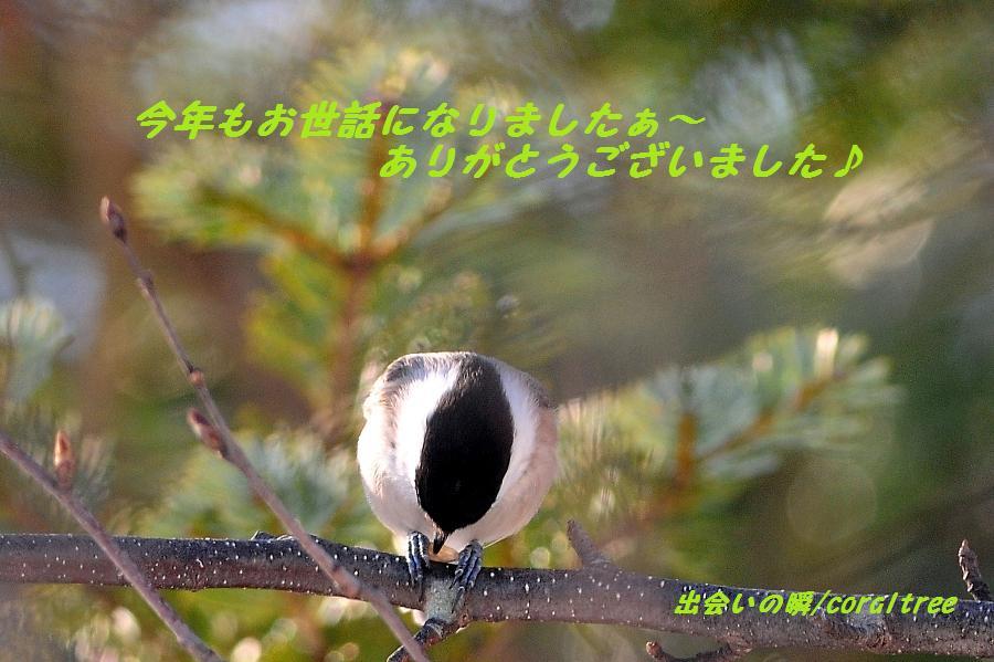 b0076870_1864183.jpg