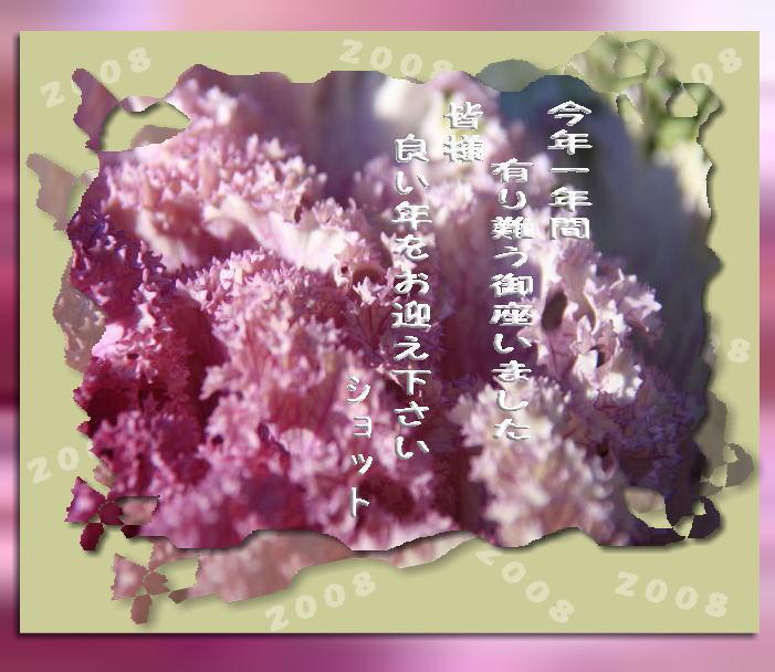 f0164592_12265429.jpg