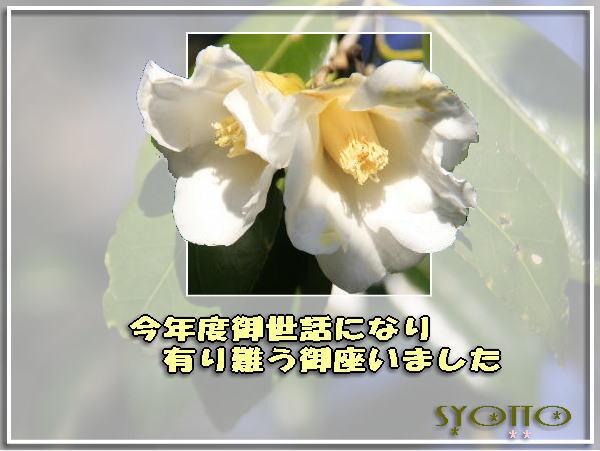 f0164592_1304099.jpg