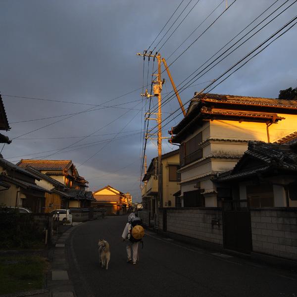 11月21日 おへんろ11日め by GX100_c0049299_19235517.jpg