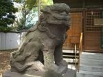 E区の狛犬 南小岩天祖神社_d0065324_1065731.jpg