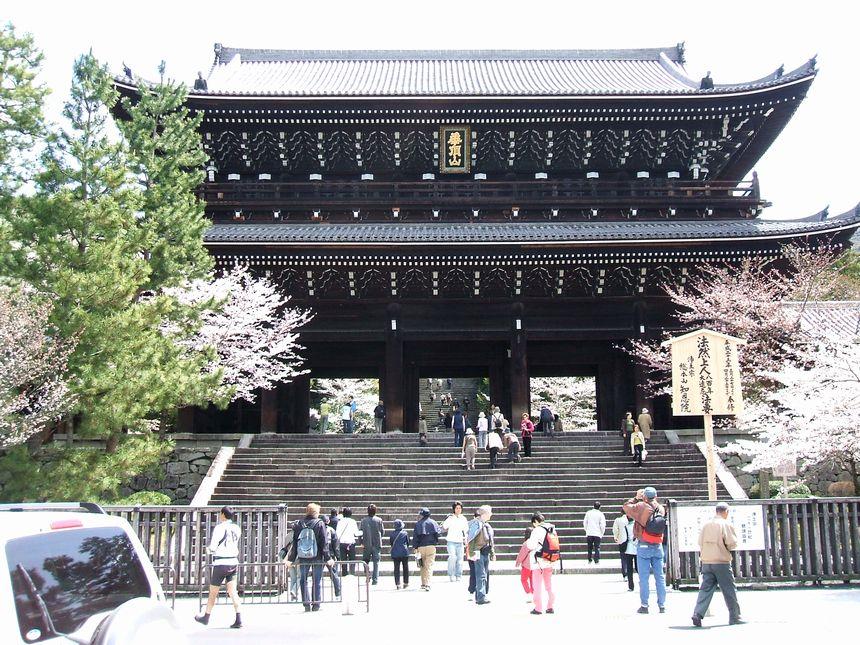 「桜情報・・・京都・知恩院」_d0133024_1439989.jpg