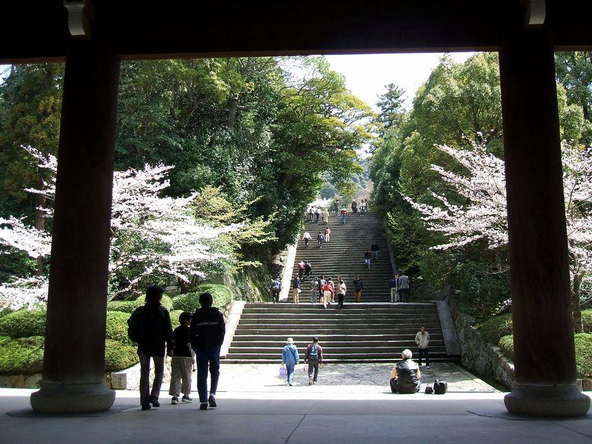 「桜情報・・・京都・知恩院」_d0133024_14402552.jpg