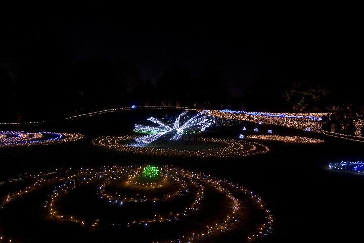 昭和記念公園のウインタービスタイルミネーション2_e0000746_23355994.jpg