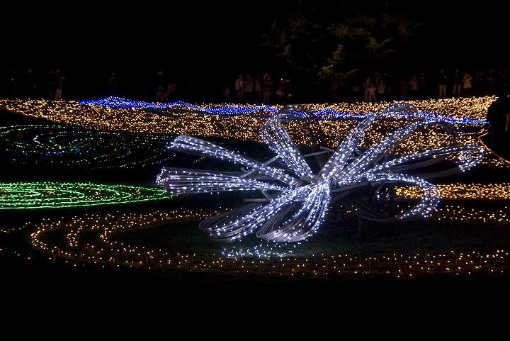 昭和記念公園のウインタービスタイルミネーション2_e0000746_23371241.jpg