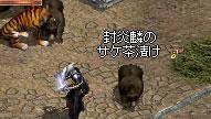 b0128058_1141699.jpg