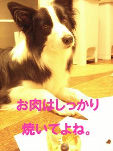 f0132070_021074.jpg