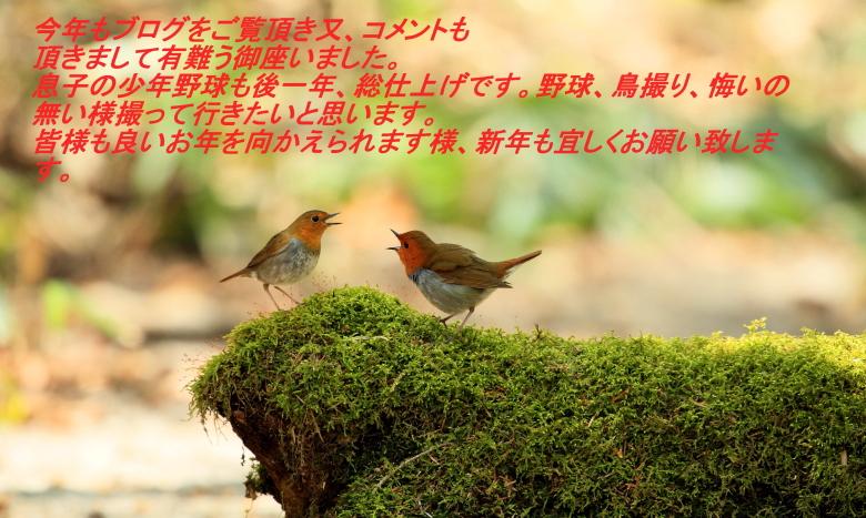 f0113782_18342331.jpg
