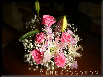 花にかこまれて~♪_a0053987_23174111.jpg