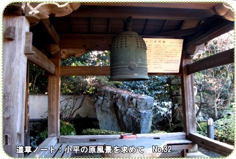 f0137096_0105236.jpg