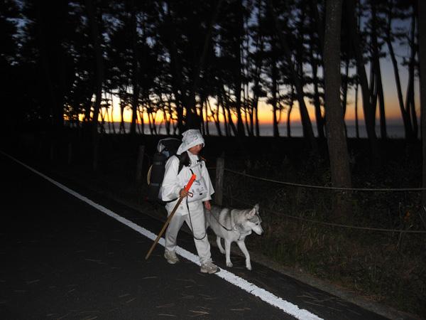 11月22日 おへんろ12日め by GX100_c0049299_1238373.jpg