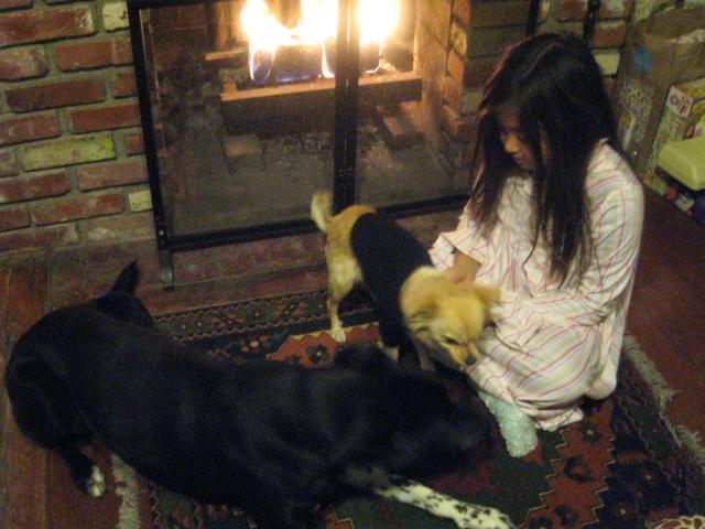 犬はヤキモチ焼き_c0048504_0403852.jpg
