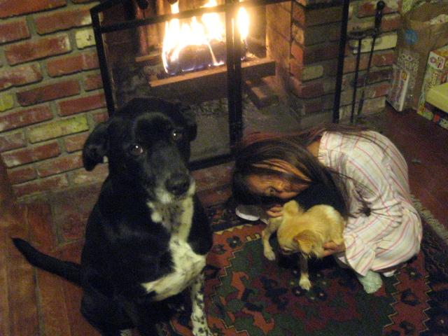 犬はヤキモチ焼き_c0048504_0444611.jpg