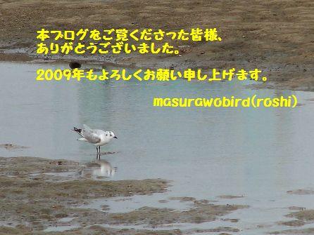 b0137208_12444621.jpg