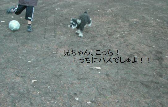f0197317_18364244.jpg