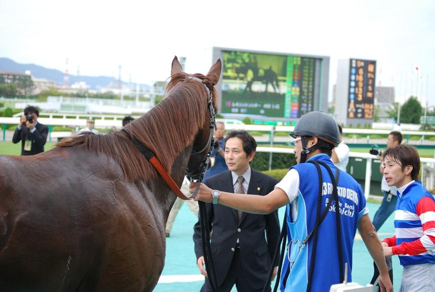 愛馬の様子2008年_f0053218_164594.jpg