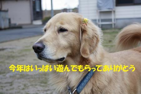 f0114128_2245335.jpg