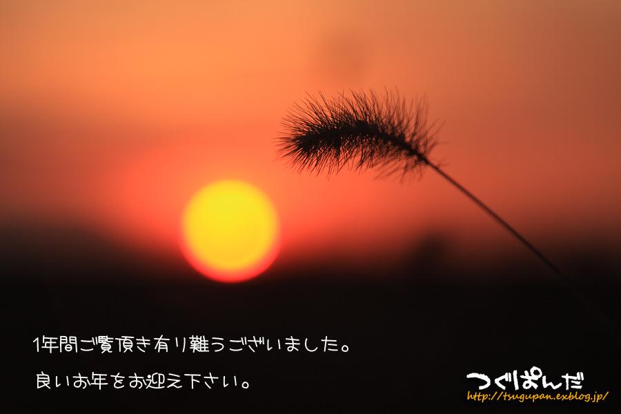 f0153628_13211460.jpg