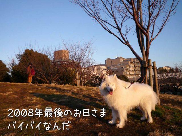 クローカ仕事納め_c0062832_1815148.jpg