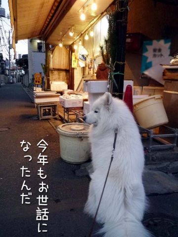 クローカ仕事納め_c0062832_1817169.jpg