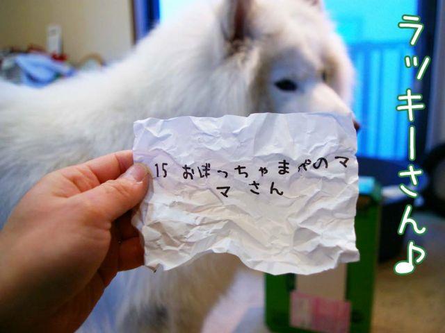 クローカ仕事納め_c0062832_18172112.jpg