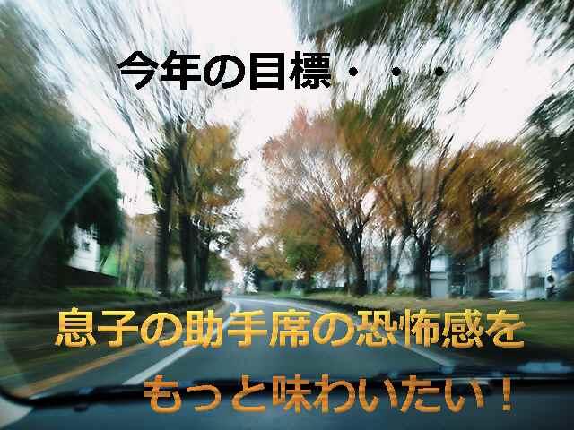 f0056835_2016389.jpg