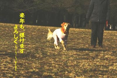 f0118135_18253159.jpg