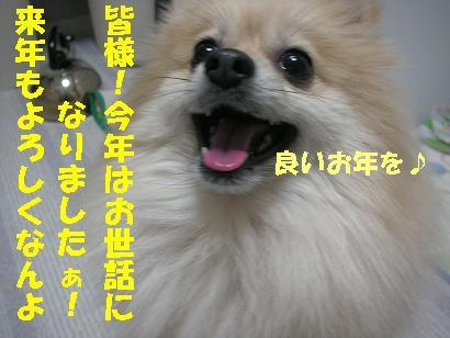c0179136_4285956.jpg