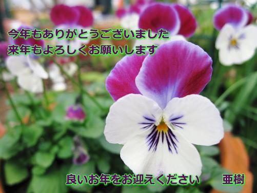 d0043737_042095.jpg