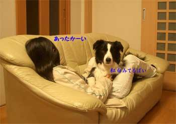 b0090938_221673.jpg