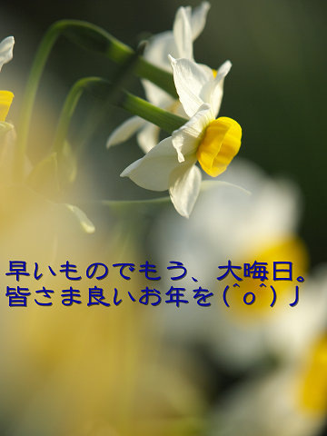 f0191564_1741874.jpg