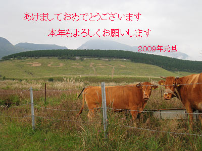 c0152779_204551.jpg