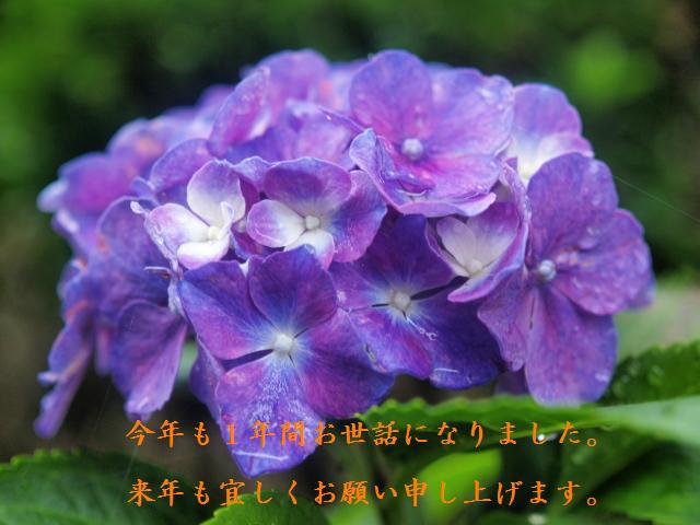 c0050380_21442140.jpg